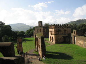 Abyssinians-in-Ethiopia